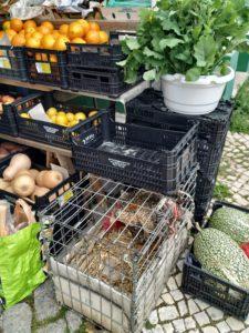 Puesto de mercado con gallo incluido